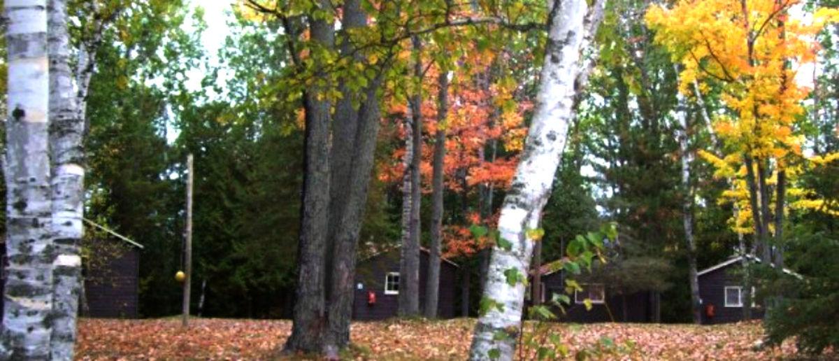 Fall2-1200x516.jpg